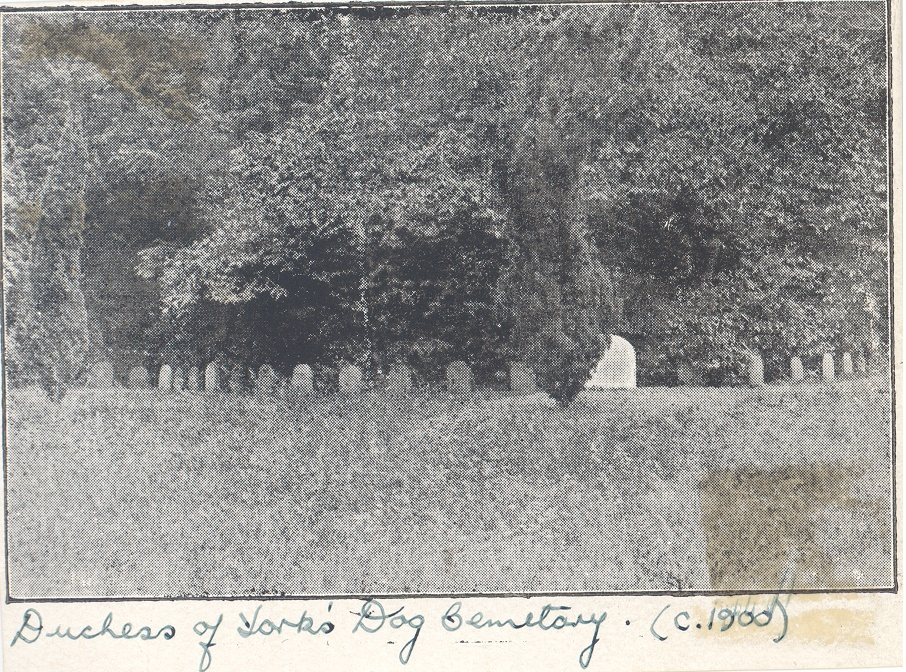 Black and white photograph of the Duchess of York's Dog Cemetery in the grounds of the Oatlands Estate, c.1900.